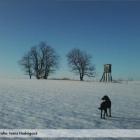 Zimna-prechadzka