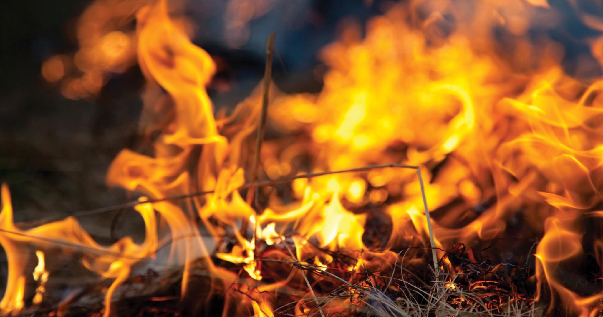 Vypaľovanie trávy v jarnom období