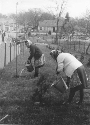 Brigáda chovateľov, 1972