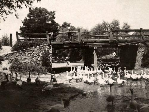 17 najstaršia dochovaná fotografia mostu na hlavnej ceste