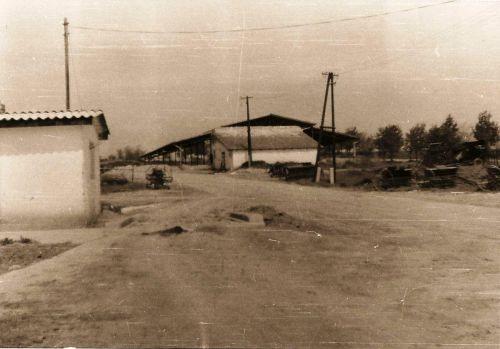 24 - ŠM, 1969